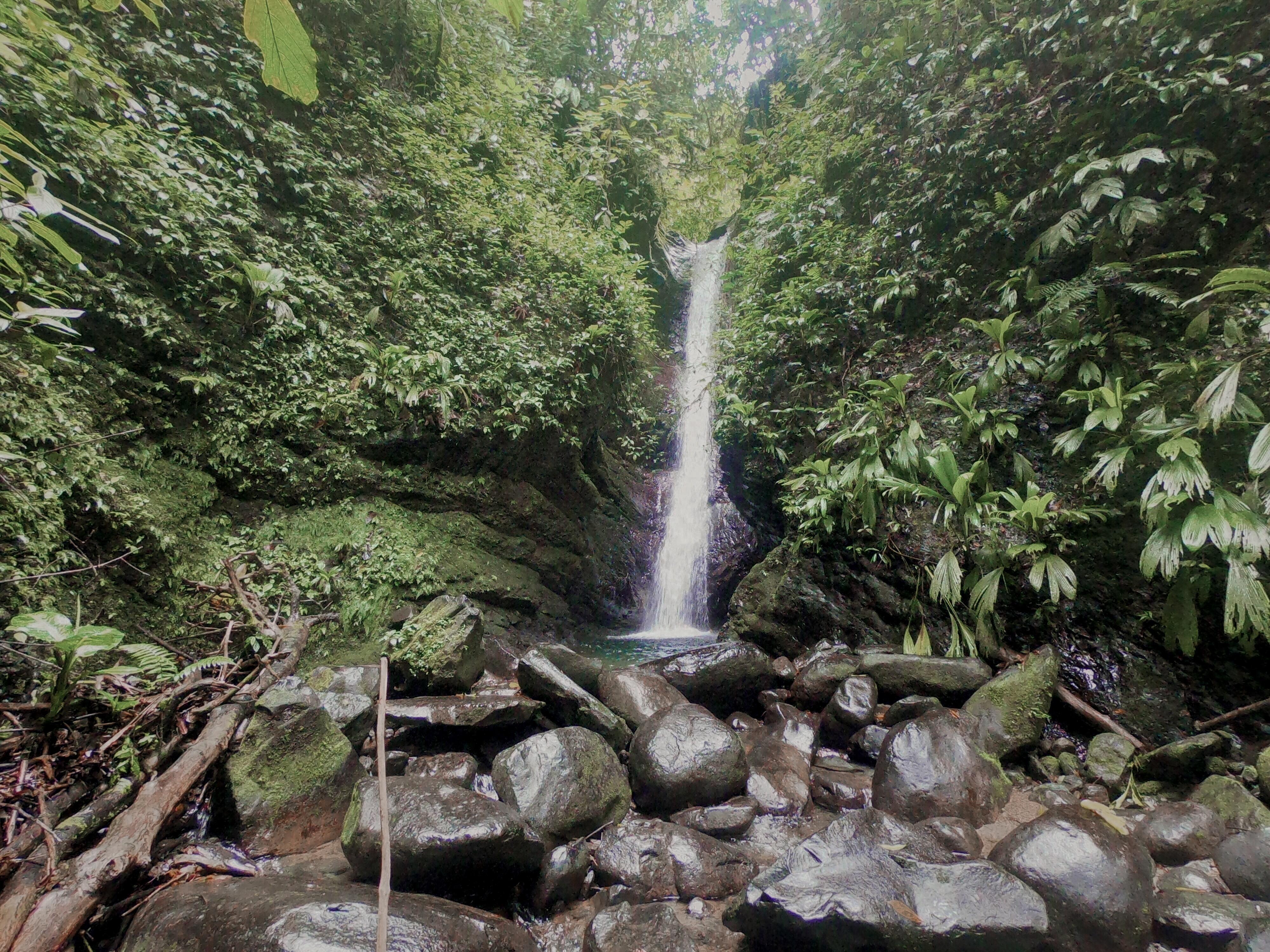 Rivière Pacuare
