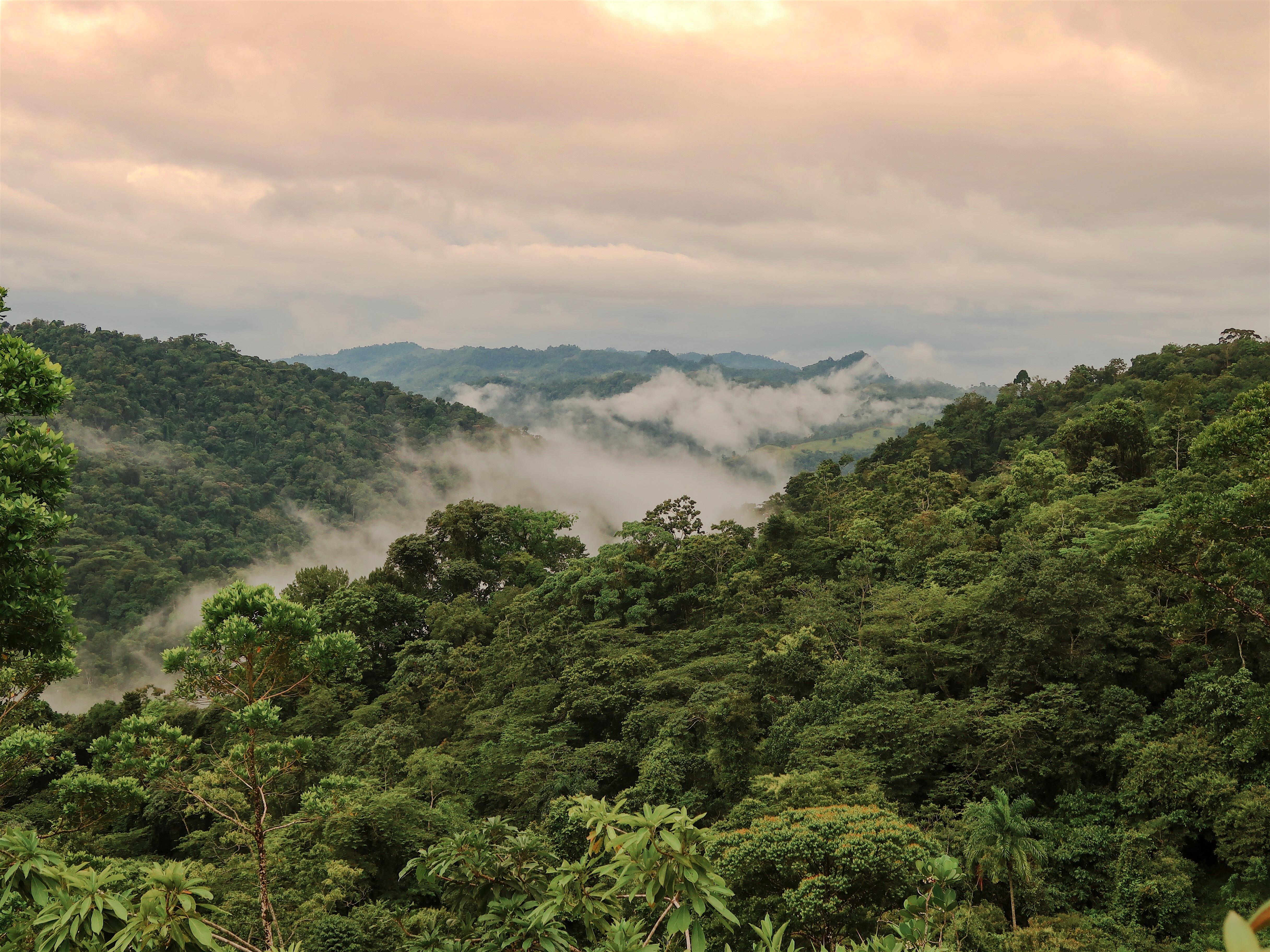 H o l à, Costa Rica